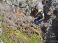 Ripristino vegetazione Giannutri_M.Giunti (24)