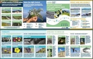 Thumbnail_Leaflet